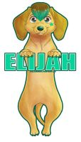 Elijah Dachshund Badge by AlexDachshund