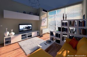 Apartment 1000$ by Max-CCCP