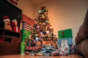Merry Christmas $2014 by joerayphoto