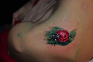 lady bug again by scottytat2