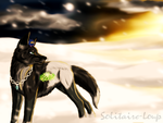 Request-The sunset of memory by Solitaire-Loup