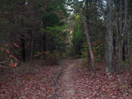 Walk With Me by Mistshadow2k4