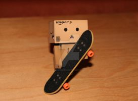 Danbo and his skateboard by SweetSymphony94