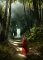 Into The Woods by rodmendez