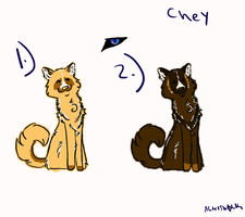 Chey Designs by Midnyghtfire99