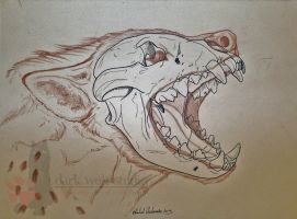 Hyena Skull 2 by NightTracker
