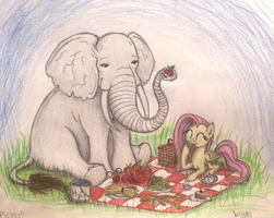 Picnic (Time Lapse Video in Description!) by TheFriendlyElephant