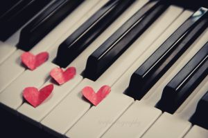 146/365 Life is like a piano by photographybyteri