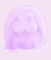 Fluffy Rabbit by kaolincash
