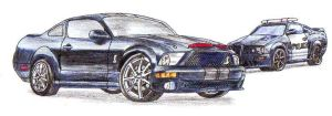 The Shelby and the Saleen by blackdragon21