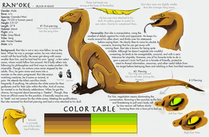 Ran'oke Ref Sheet by Xainra
