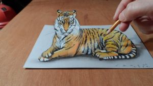 3D Drawing Tiger by VamosArt
