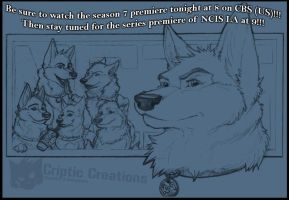 K9 NCIS - Watch Tonight by LunarCheza