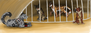 EBC-August: Teaching Prisoners by OneLifeRemaining