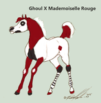 Ghoul X Mademoiselle Rouge foal concepts by Carousel-Stables