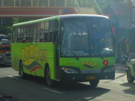 RORO Bus by MG7000