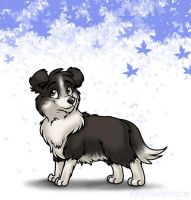Tanku the Border Collie by kaykaykit