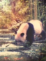 Panda 2 by MariLucia