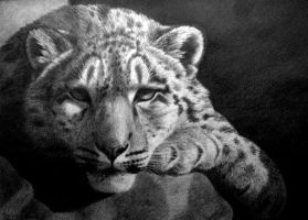 Mountaintop Chillout, pencil by Panthera11