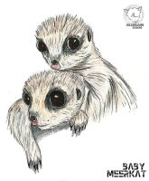 Baby Meerkat by KILLER-LAMB