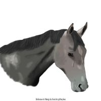 Horse digital 1 by Orkiss