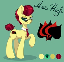 Ref gift for Aces by OrchidPony