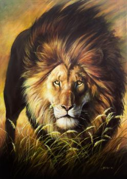 Lion by Nordheimer