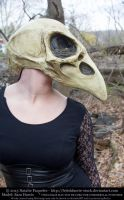 Sara Harris - Crow Skull Mask I by fetishfaerie-stock