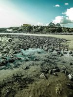 Early Evening View of Trecco Bay Beach April 2012 by welshrocker