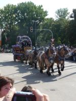 brewery horses and cart I by two-ladies-stocks