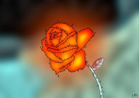 Fire and Ice Flower by Almarane