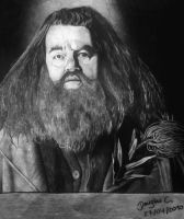 Rubeo Hagrid by doguinha
