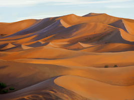 Nov 23rd Speed Paint Study Sahara Desert by charfade