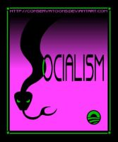 Beware Socailsm by Conservatoons