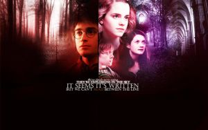harry potter wallpaper 2 by mia47