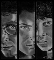 Harry Potter Trio by OliviasArtwork