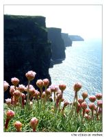 - the cliffs of moher - by natasha-marie