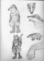 badgers by arcticfoxie