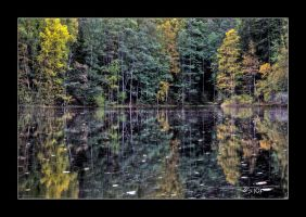 autumn waterscape III by OrisTheDog