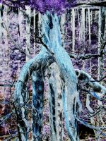 Funky Fantasy  abstract nature by todds201