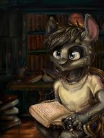 At the library by Antanariva