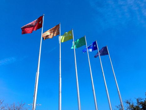 Dallas Flags Project 2014 by mdmodeler