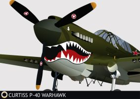 "Curtiss-Wright P40 ""Warhawk"" by RubenGaspar"