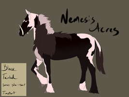 Lion Harte Colt Custom for NemesisAcres by Whitelupine