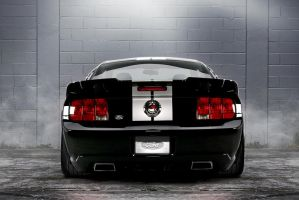 Stage 3 Roush by lovelife81