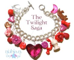 Twilight Saga Charm Bracelet by colourful-blossom