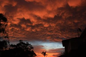 Amazing sky .not edited. by SxyfrG