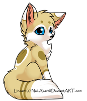 fox adopt-closed- by gold-adopts