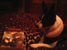 even dogs read mangas too by Moonshineemo