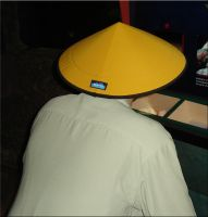 Wild Yellow Hat by WDWParksGal